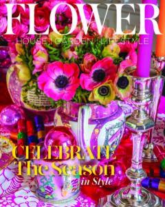 COVER Nov Dec20 HI