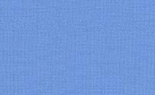 Blue-Jay-196