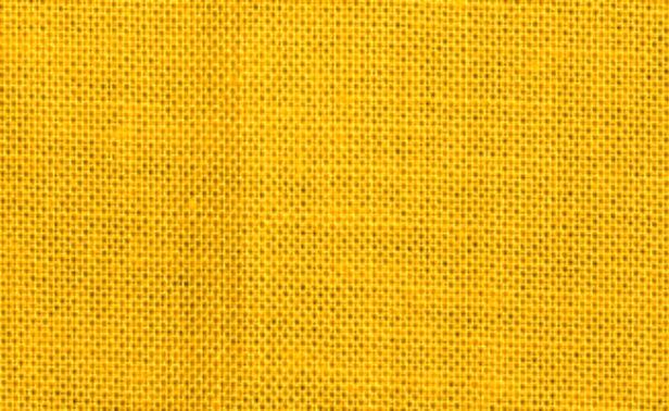 Classic Poplin Corn Yellow 018