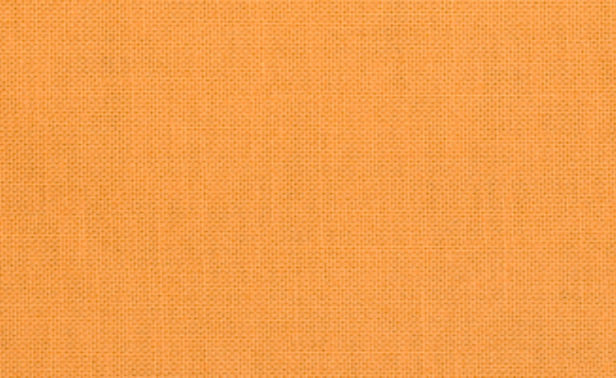 Classic Poplin Goldfish 037