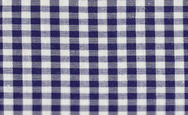 Gingham Navy Small Edited
